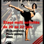 stage boxe